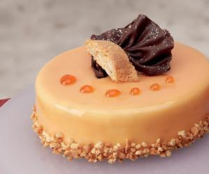 Autumn in the gelato parlour: Prodotti Stella's new semifreddo cakes